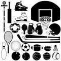 4833443-des-equipements-sportifs-et-de-ballons-dans-le-detail-silhouette-vecteur.jpg