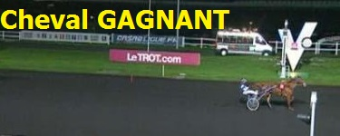 Cheval gagnant